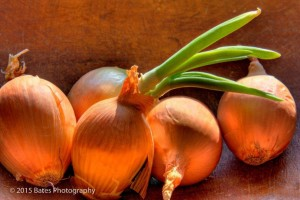 onions_peter bates